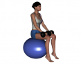 Stability Ball Sitting Bilateral Dumbbell Heel Raise