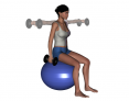 Stability Ball Sitting Bilateral Dumbbell Lateral Raise