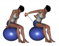 Bilateral Bent-Over Shoulder Extension on Stability Ball