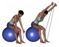 Bent-Over Shoulder Flexion on Stability Ball