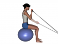 Bilateral Biceps Curl with Tubing on Stability Ball