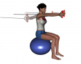 Stability Ball Sitting Bilateral Tubing Chest Fly