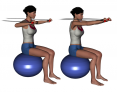 Stability Ball Sitting Bilateral Tubing Chest Press
