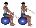 Bilateral Hammer Curl with Tubing on Stability Ball