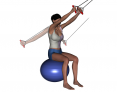 Stability Ball Sitting Bilateral Tubing High-to-Low Reverse Fly