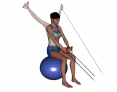 Stability Ball Sitting Bilateral Tubing Low-to-high Reverse Fly