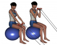 Stability Ball Sitting Bilateral Tubing Reverse Arm Curl