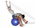Stability Ball Sitting Bilateral Tubing Straight Arm Back Extension