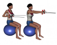 Stability Ball Sitting Bilateral Tubing Row