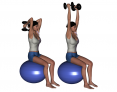 Stability Ball Sitting Bilateral Dumbbell Triceps Extension