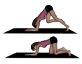 Tripod Kneeling to Inverted V Pose